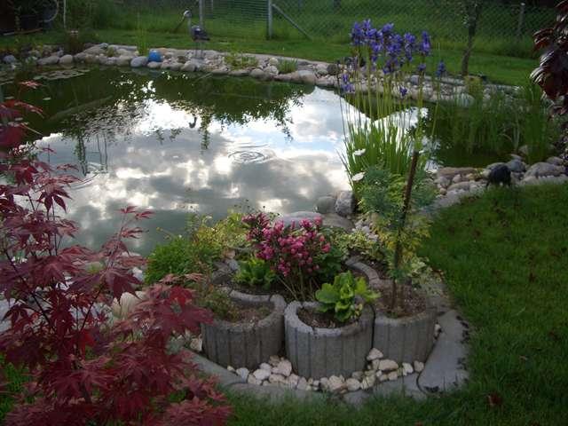 Bühler Gartenbau bühler gartenbau ag